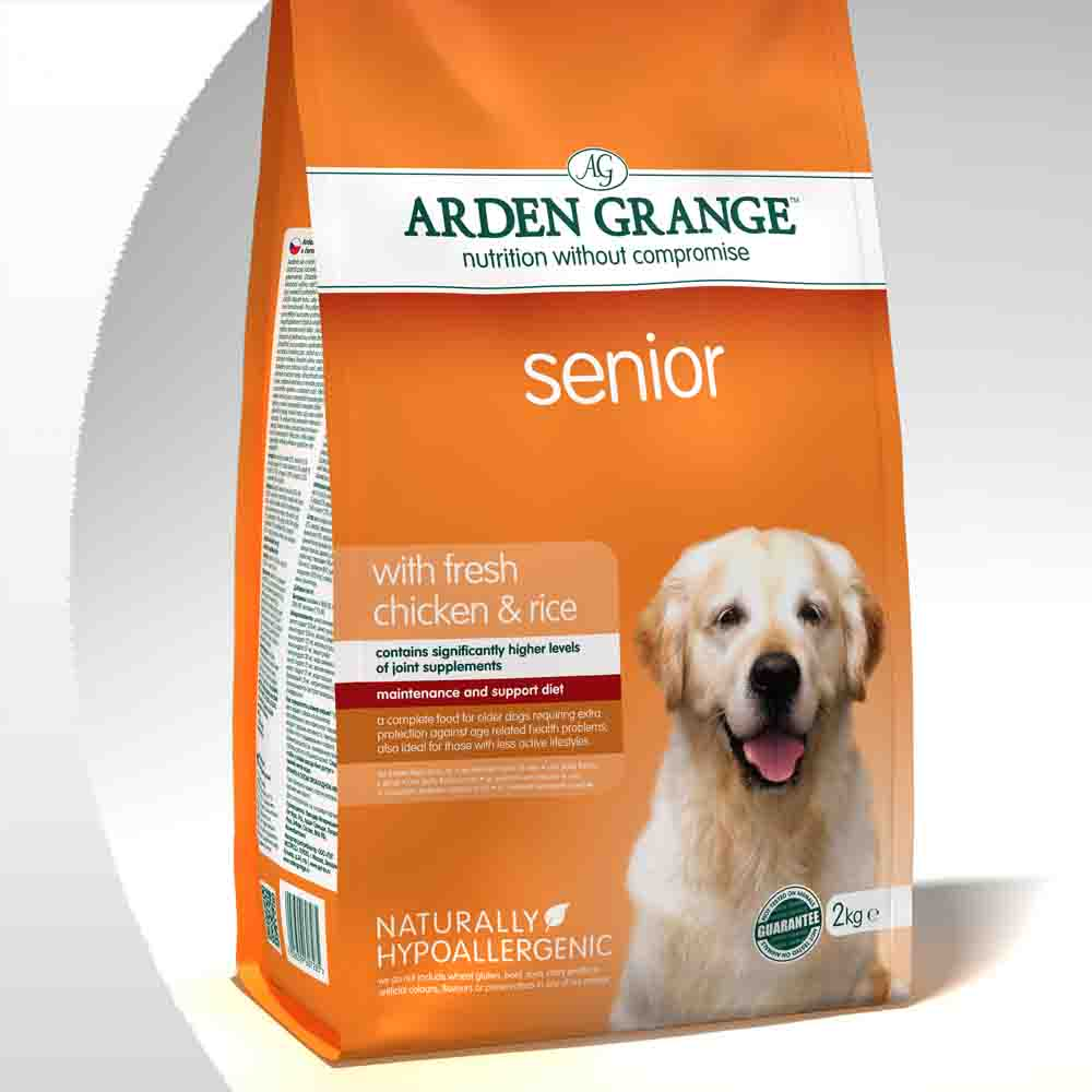 11_Dog_Adult_Senior